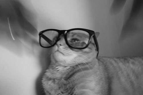 henry wears glasses