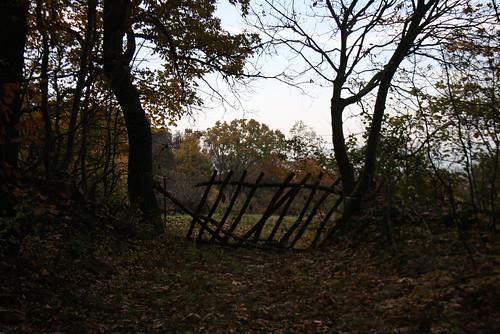 fall hungary hegy ungarn 2010 kirándulás erdei hongrie domb ősz erdő október túra hétvége séta őszi sümeg domok