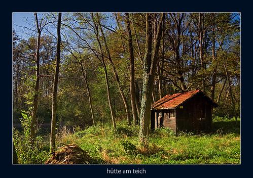 trees lake austria pond hut styria