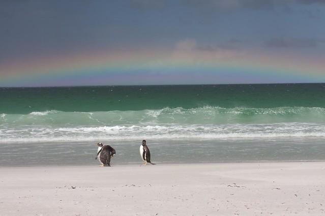 rainbows0001