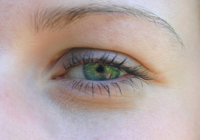 Eye of Delphine - with Camera Pupil