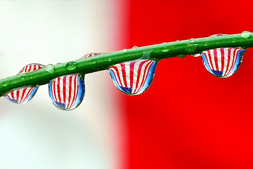 drops of stars and stripes