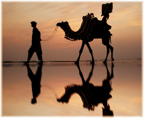 pakistan sea summer reflection art beach water silhouette golden bravo colours view camel karachi rider vacations 100faves 35faves aplusphoto holidaysvacanzeurlaub superhearts iqbalkhatri