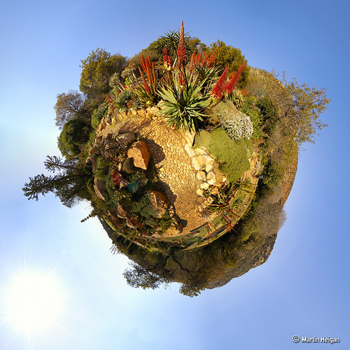 Botanical Garden (Stereographic)