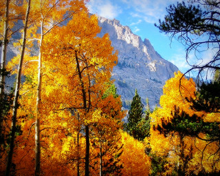 Autumn in the Eastern Sierra