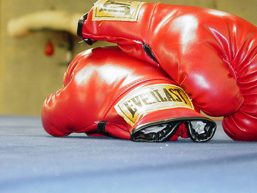 pair of red, Everlast boxing gloves