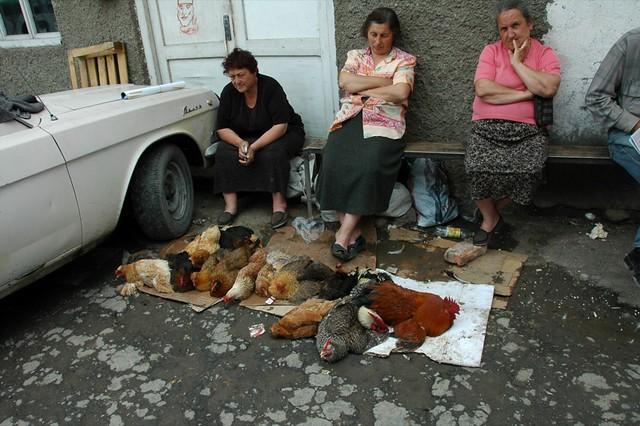 Chicken Vendors at Telavi Market - Kakheti, Georgia