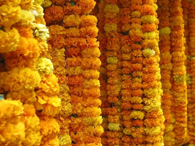 Guirlandes de fleurs fraiches flickr photo sharing for Fleurs fraiches