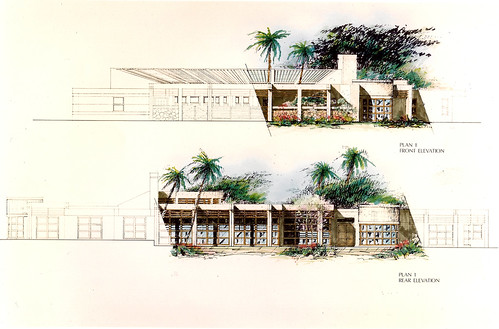Hawaiian Custom Home