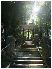 Heavenly Steps
