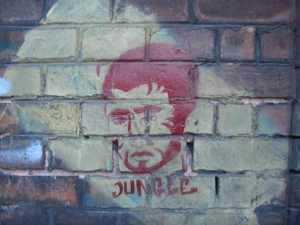 stencil | jungle | krakow 2007
