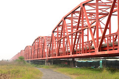 girder bridge, beam bridge, truss bridge, cantilever bridge, bridge,