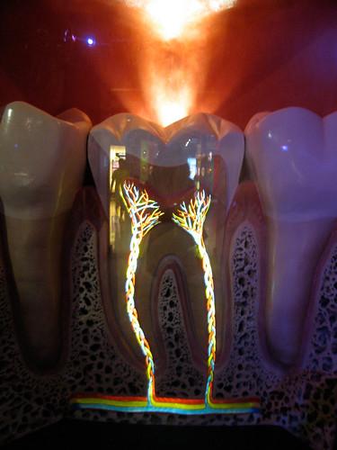 Glowing Teeth
