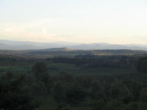 tanzania gibbsfarm
