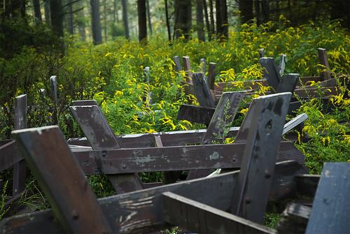 park ma nikon picnic forrest massachusetts picnictables d80 massasoitstatepark