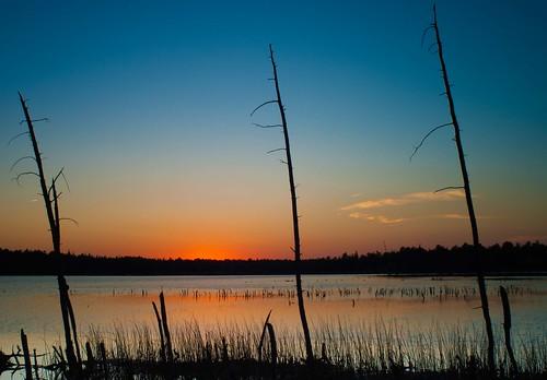 sunset nj pinelands lakechatsworth