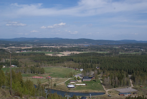 forest landscape view sony sverige alpha a100 bollnäs