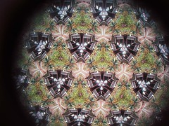 Garden Kaleidoscope At Olbrich >> Top Eyepiece View Garden Kaleidoscope Steel Sculpture By Flickr
