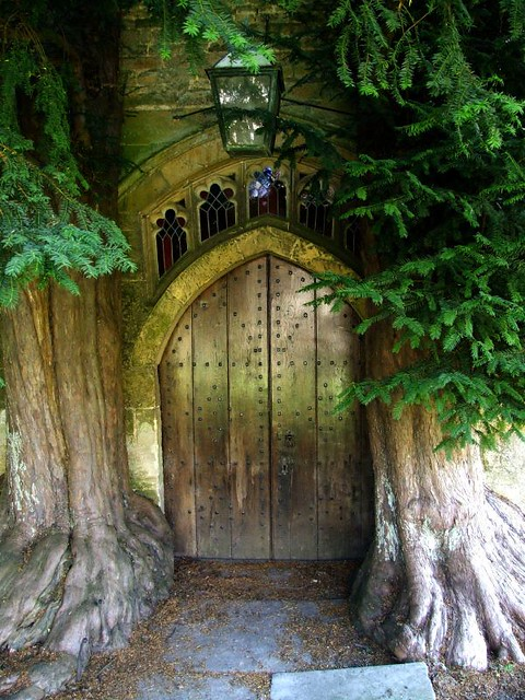 Photo for The works fairy door