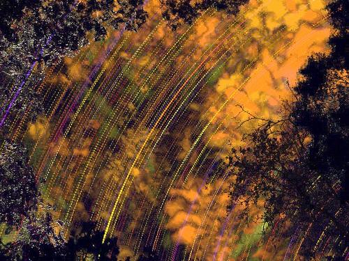 longexposure trees sky geometric lines night clouds stars timelapse spooky futurism rotation astronomy nightsky futurismo umbertoboccioni chronophotography earthandspace imagej bragaglia chdk photodynamism étiennejulesmarey astro:subject=stars astro:gmt=20100621t0000