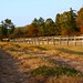 Photo of the Week: Fenced Pathway, Hadley, MA by USFWS Headquarters