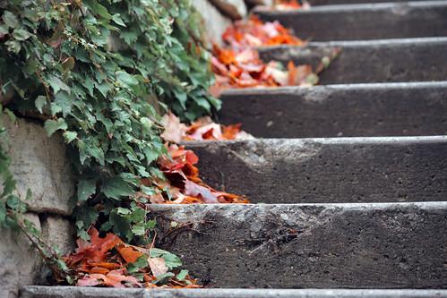 Union Steps