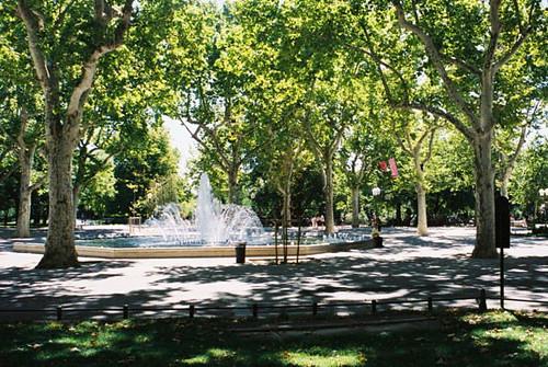 Montpellier jardin du champs de mars flickr photo for Jardin 85 cipolletti