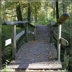 Brücke am Glemsbrunnen
