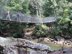suspension bridge, rope bridge, bridge,