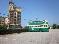 Destin FL McGuires Bus
