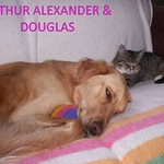 ARTHUR ALEXANDER + DOUGLAS