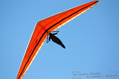 adventure, airplane, wing, air sports, sports, recreation, glider, outdoor recreation, windsports, hang gliding, gliding, sport kite, flight,