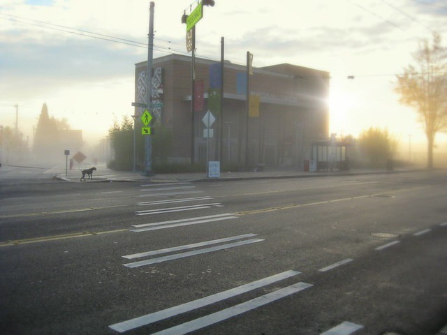 Light Rail Station in Fog