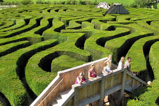 Longleat Hedge Maze
