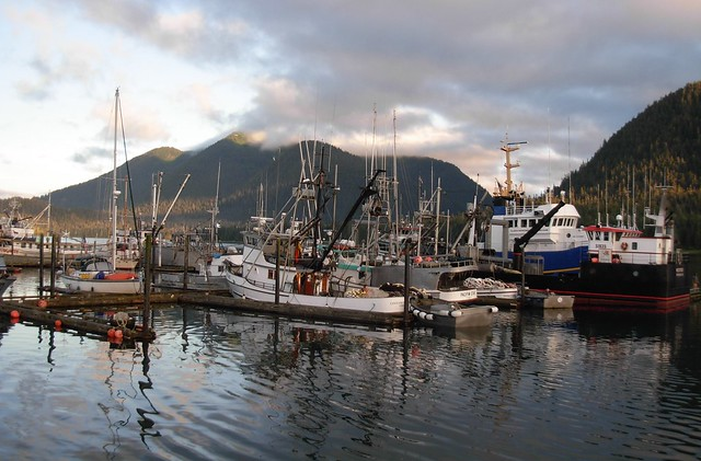 fishing boats petersburg alaska harbor flickr photo
