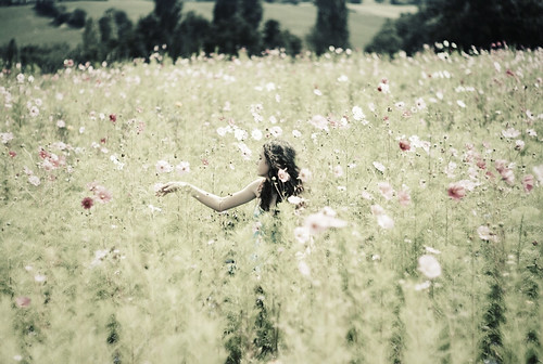 In the Wild Flower Field. 01