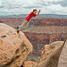 Down He Goes into the Grand Canyon! by Marc Shandro