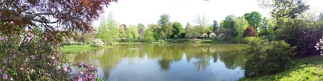 mount auburn cemetery pond