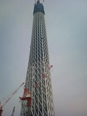 東京スカイツリー (10)