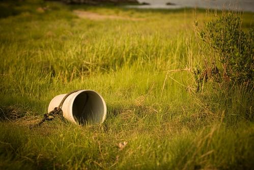 park ny newyork grass canon bucket rye dslr vignetting westchester conservancy 70200mm marshlands ef70200mm canonef70200mmf28lusm ryenewyork westchesterny canon70200f28l westchesternewyork ryeny 70200mmf28 xti 400d marshlandsconservancy nrbelex ryemarshlands marshlandcountypark