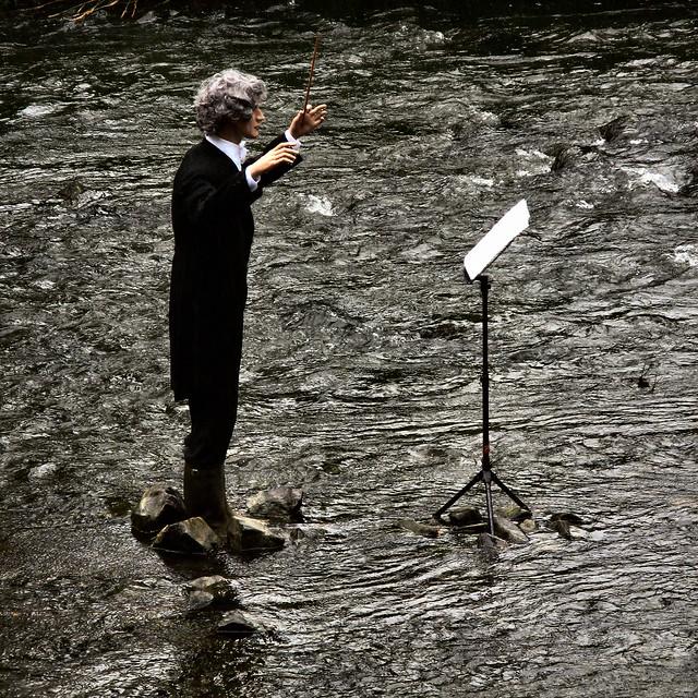conducting a frog concert