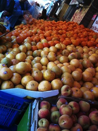 Oranges grapefruit & nectarines oh my