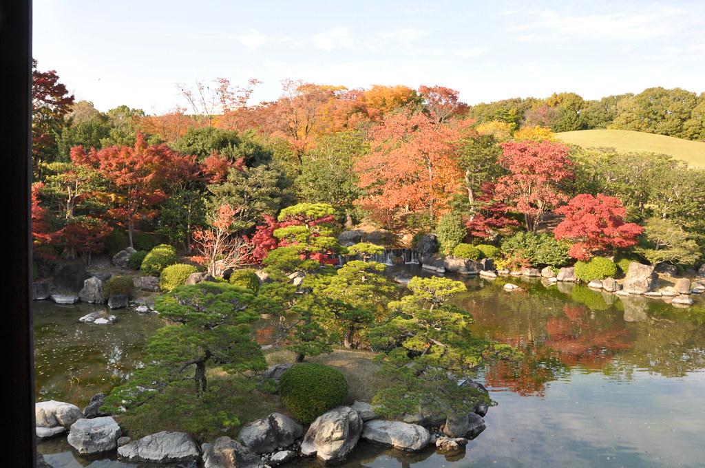 2010.11.19_万博公園・太陽の塔_116