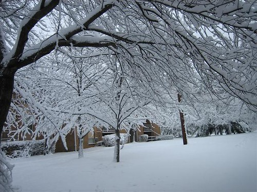 February Blizzard 2006