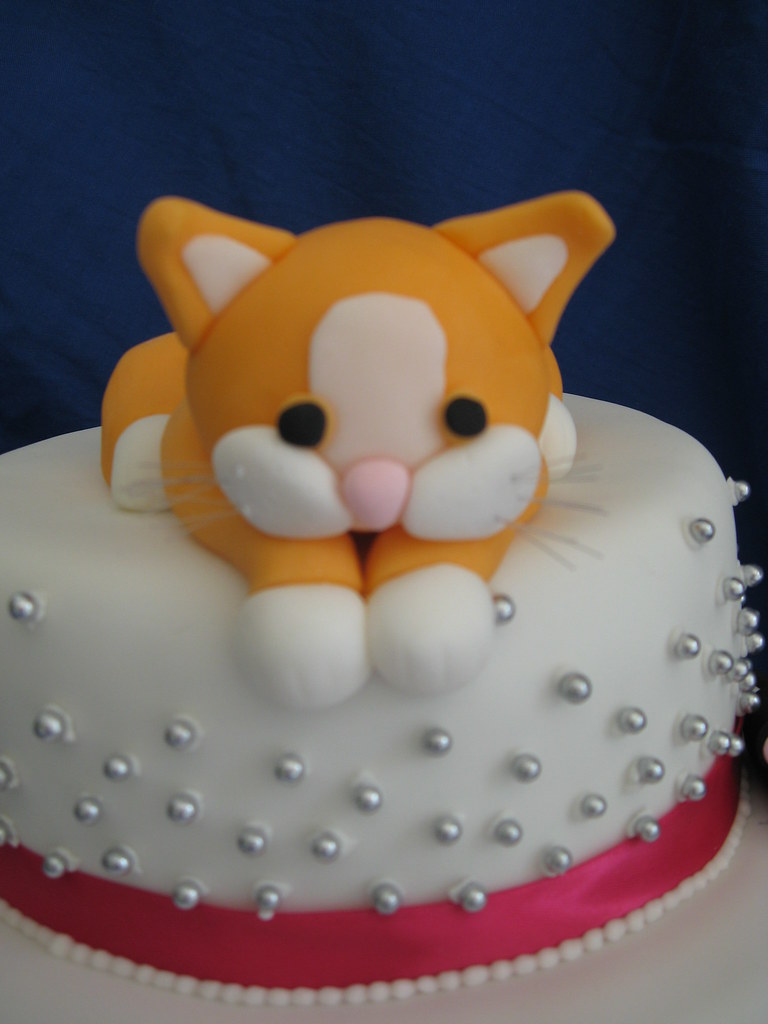 Kitten Cat Cake A Photo On Flickriver