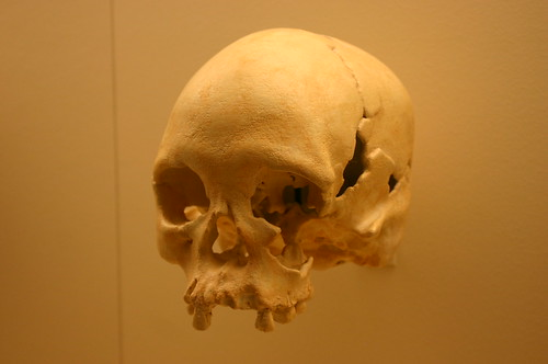 Homo Sapiens 11,500 Years Old
