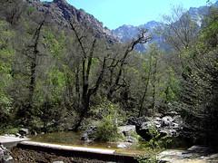En montant au Saltare: la prise d'eau de la Cavichja