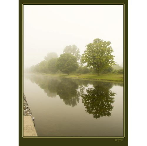 Fog on the canal