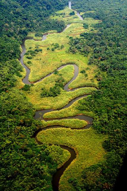 Meandering River in the Congo