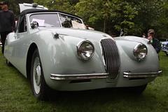 automobile, executive car, jaguar xk120, jaguar xk140, vehicle, automotive design, antique car, classic car, vintage car, land vehicle, luxury vehicle, convertible,